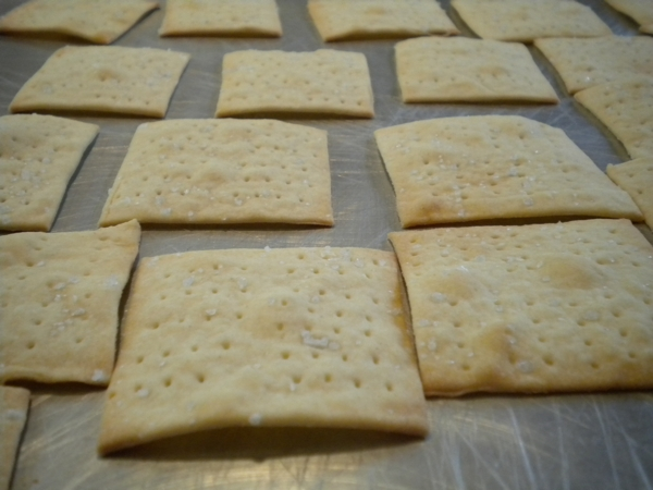 fucking a slat cracker Cracker, sometimes white cracker or cracka, is a colloquial term for white people, used especially for poor rural whites in the southern united states it is also at times used indiscriminately and pejoratively against any person of white background.