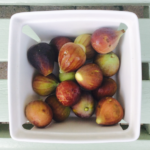 freshly grown figs