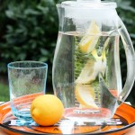 fruit and herb infused spa water | writes4food.com